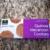 Quinoa Macaroon Cookues