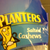 Planters Salted Cashews 1 Pack
